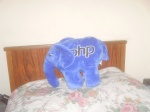 Elefantinho do PHP de Pelúcia que eu ganhei da Oracle
